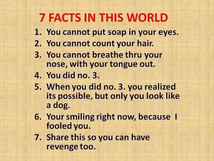 The 7 Facts You Need To Know!