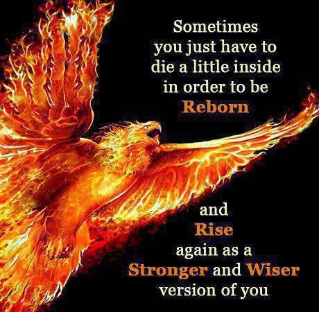 reborn eagle