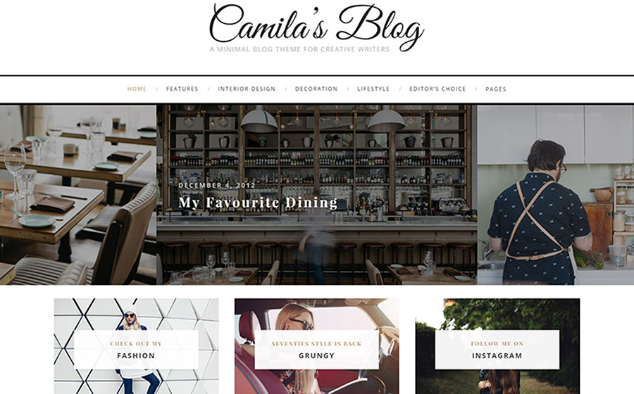 Camila - Minimal Blog WordPress Theme